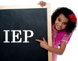 Your Guide to an IEP That Works